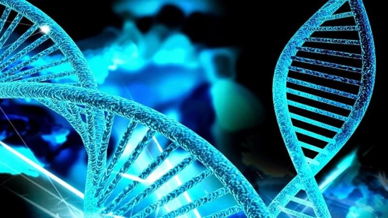 Teoría genética Sefardí ¿Mito o Realidad?