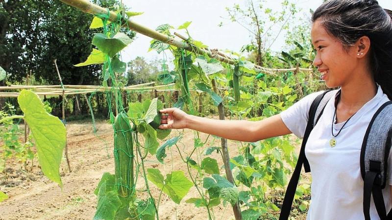 agricultura israelí