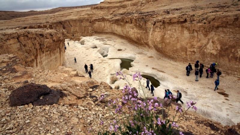 8 razones por las que amamos a Israel en el otoño
