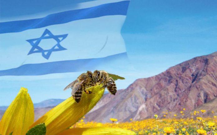 Israel: Una tierra que fluye leche y miel