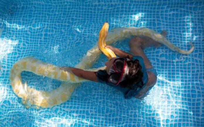 Niña israelí le gusta nadar con su mascota la serpiente