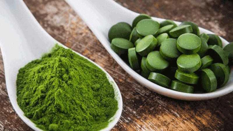 Investigadores israelíes dicen que el alga espirulina podría reducir la tasa de mortalidad por COVID
