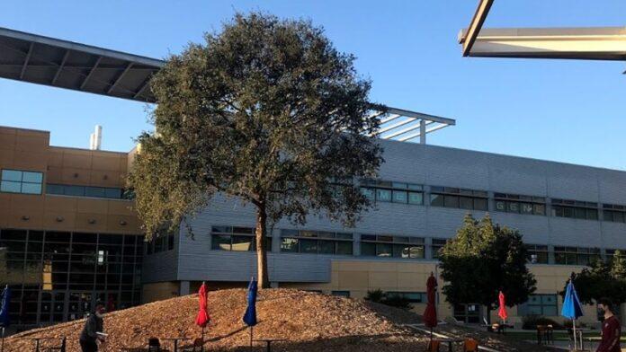 Pintan esvásticas frente a la casa de la fraternidad judía del campus de California