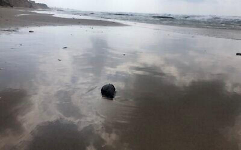 Israel dice que ha identificado el barco que causó una fuga masiva de petróleo en el Mediterráneo