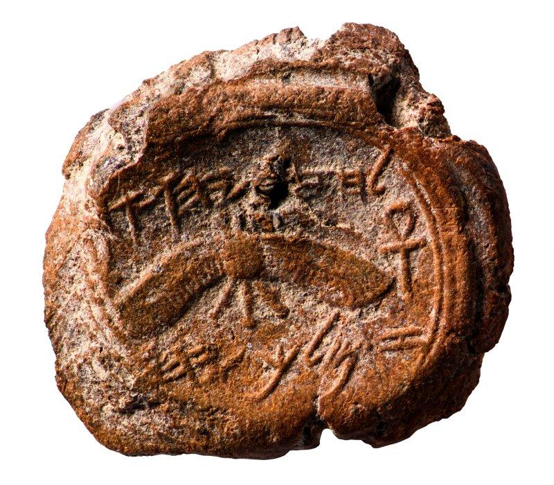 La pionera e intrépida arqueóloga bíblica Eilat Mazar fallece a los 64 años