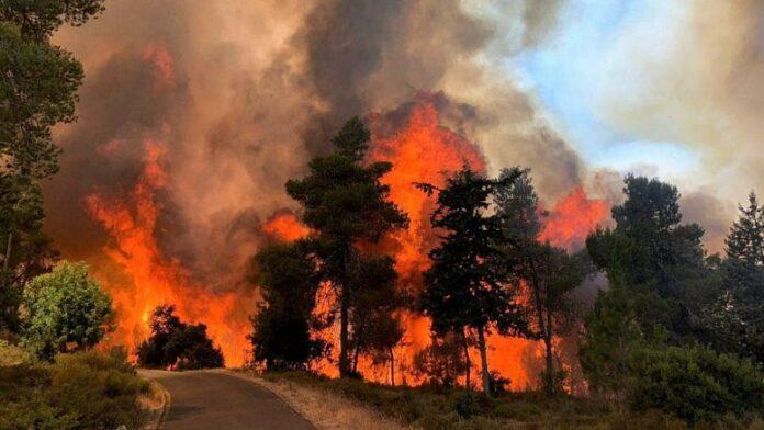 Los incendios forestales devastan Jerusalén y sus alrededores, intensificados por el calor y los vientos