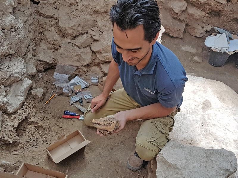 Este cerdito llego a Jerusalén hace 2.700 años, planteando algunas preguntas